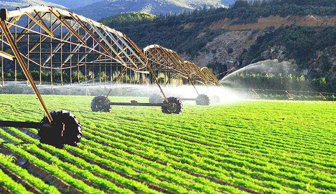 Nông nghiệp kỹ thuật cao